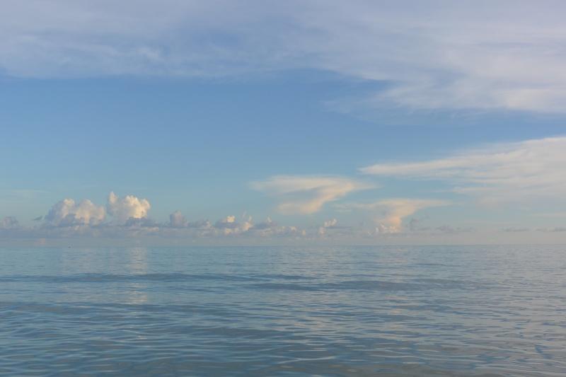 Le merveilleux voyage en Floride de Brenda et Rebecca en Juillet 2014 - Page 20 12210