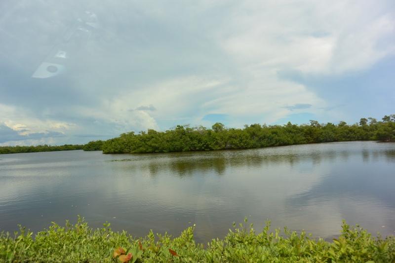 Le merveilleux voyage en Floride de Brenda et Rebecca en Juillet 2014 - Page 20 1413