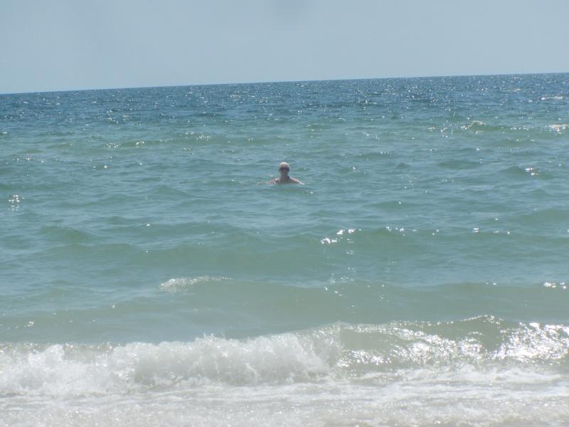Le merveilleux voyage en Floride de Brenda et Rebecca en Juillet 2014 - Page 19 1511