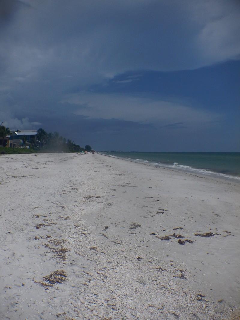 Le merveilleux voyage en Floride de Brenda et Rebecca en Juillet 2014 - Page 19 1711