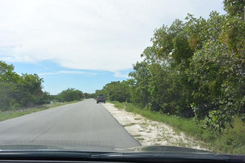 Le merveilleux voyage en Floride de Brenda et Rebecca en Juillet 2014 - Page 20 1713