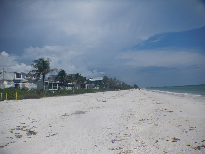 Le merveilleux voyage en Floride de Brenda et Rebecca en Juillet 2014 - Page 19 1811