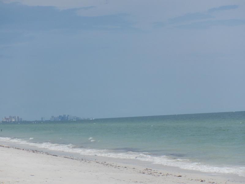Le merveilleux voyage en Floride de Brenda et Rebecca en Juillet 2014 - Page 19 1911