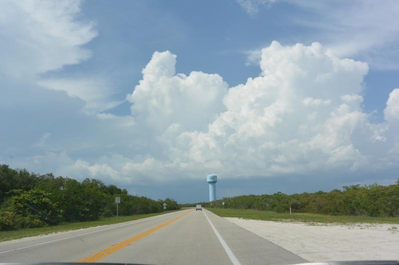 Le merveilleux voyage en Floride de Brenda et Rebecca en Juillet 2014 - Page 19 2211