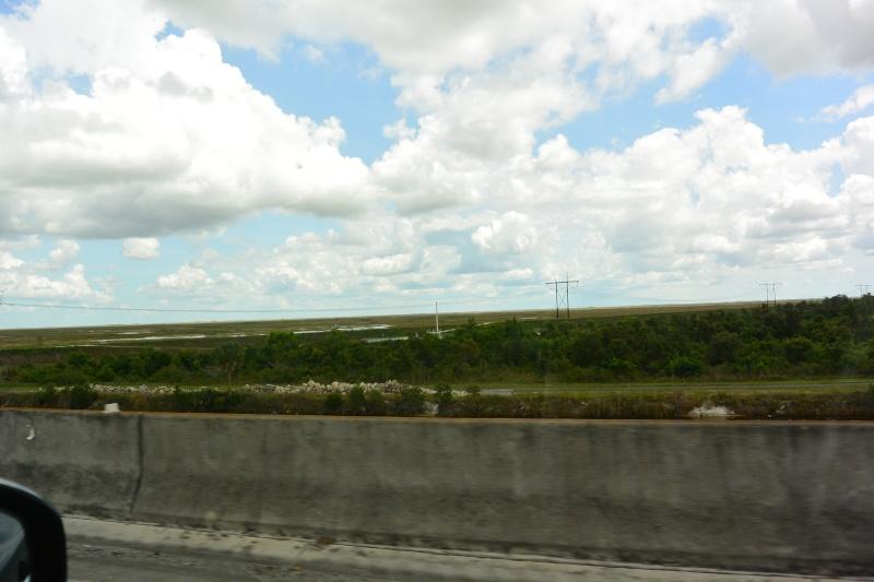 Le merveilleux voyage en Floride de Brenda et Rebecca en Juillet 2014 - Page 19 2310