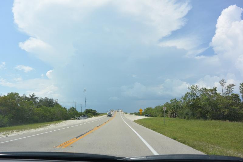 Le merveilleux voyage en Floride de Brenda et Rebecca en Juillet 2014 - Page 19 2311