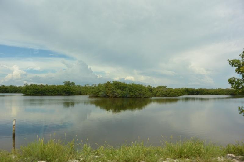 Le merveilleux voyage en Floride de Brenda et Rebecca en Juillet 2014 - Page 20 2313