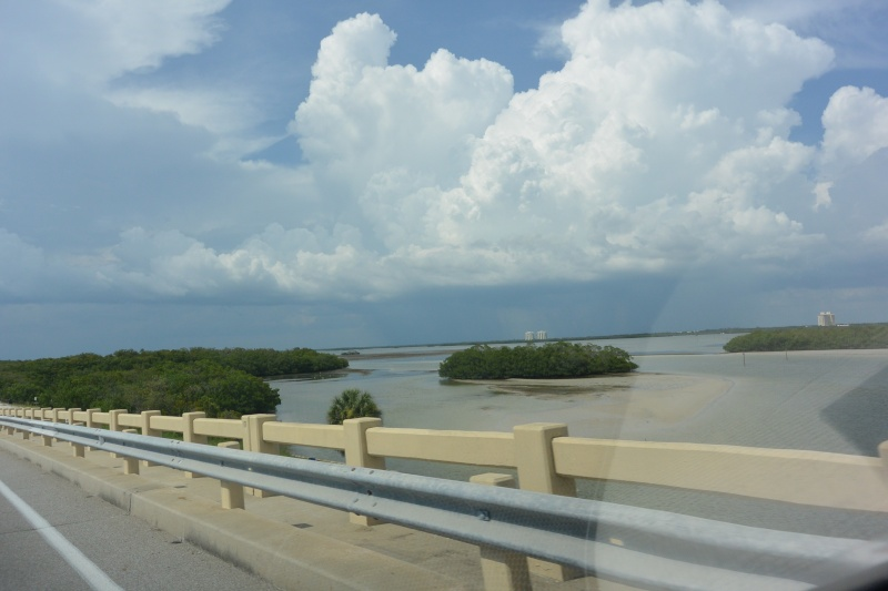 Le merveilleux voyage en Floride de Brenda et Rebecca en Juillet 2014 - Page 19 2611