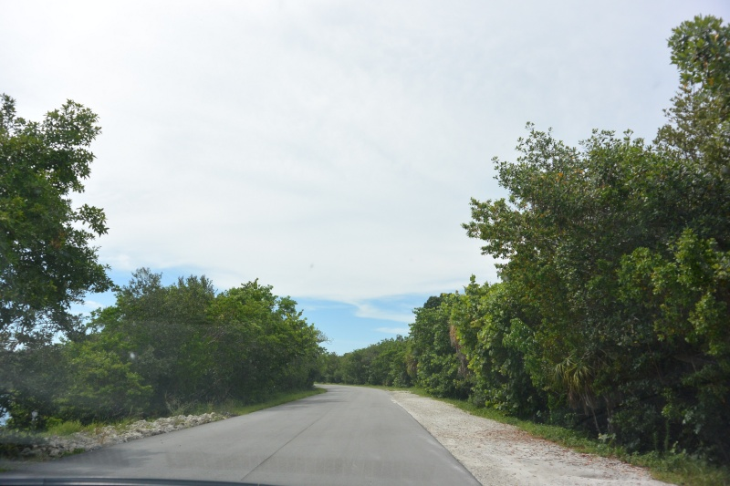 Le merveilleux voyage en Floride de Brenda et Rebecca en Juillet 2014 - Page 20 2613