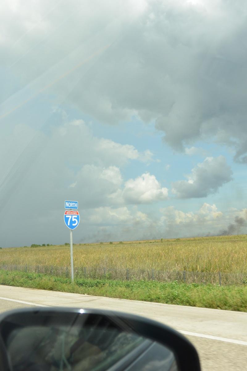 Le merveilleux voyage en Floride de Brenda et Rebecca en Juillet 2014 - Page 19 2810