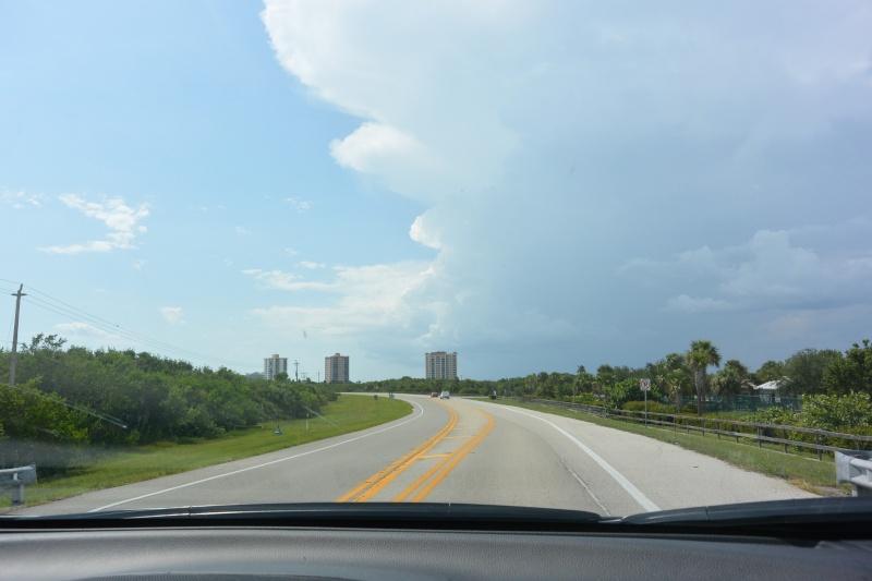 Le merveilleux voyage en Floride de Brenda et Rebecca en Juillet 2014 - Page 19 2811