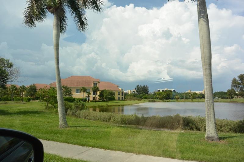 Le merveilleux voyage en Floride de Brenda et Rebecca en Juillet 2014 - Page 19 3011