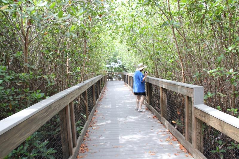 Le merveilleux voyage en Floride de Brenda et Rebecca en Juillet 2014 - Page 20 3413