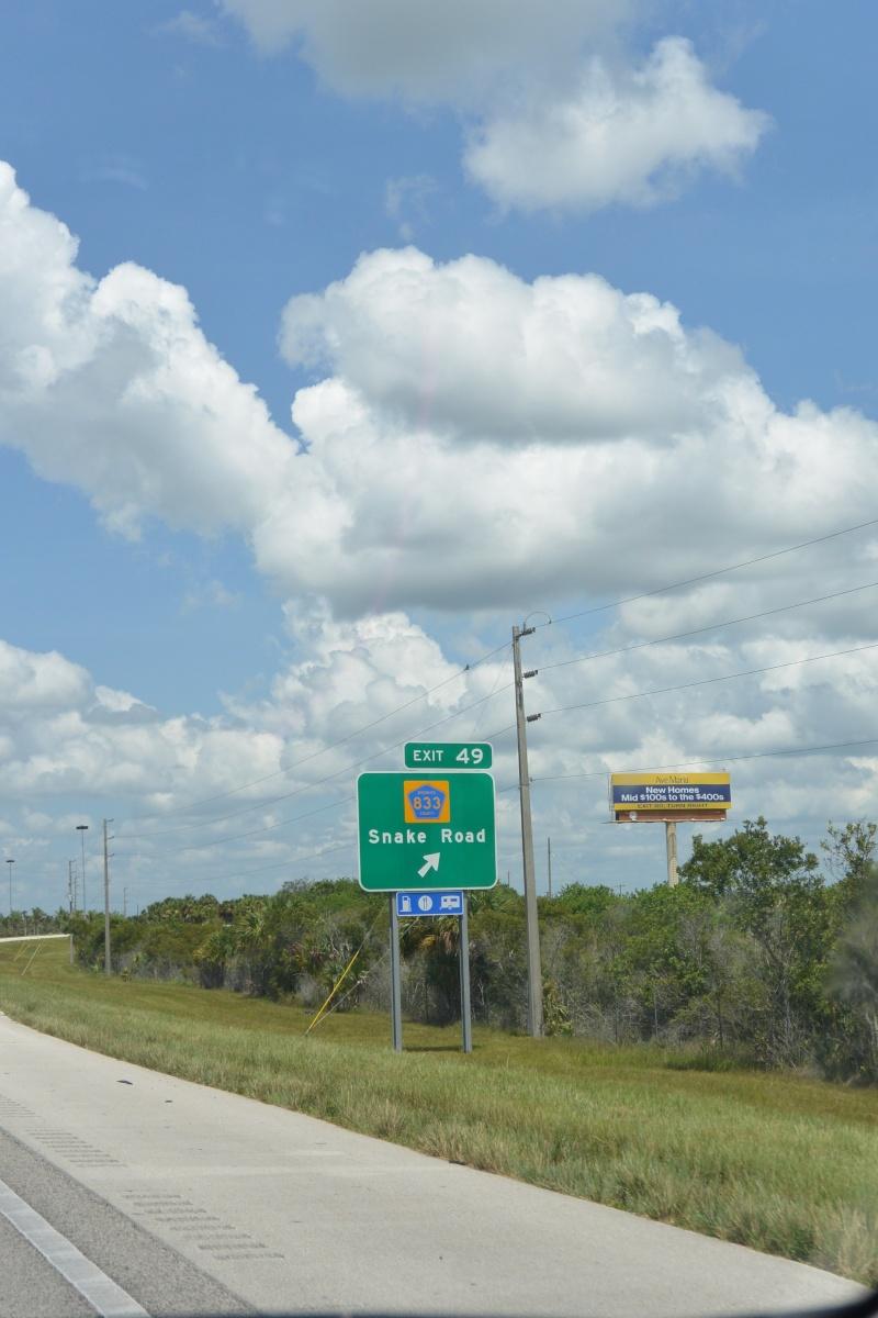 Le merveilleux voyage en Floride de Brenda et Rebecca en Juillet 2014 - Page 19 3510