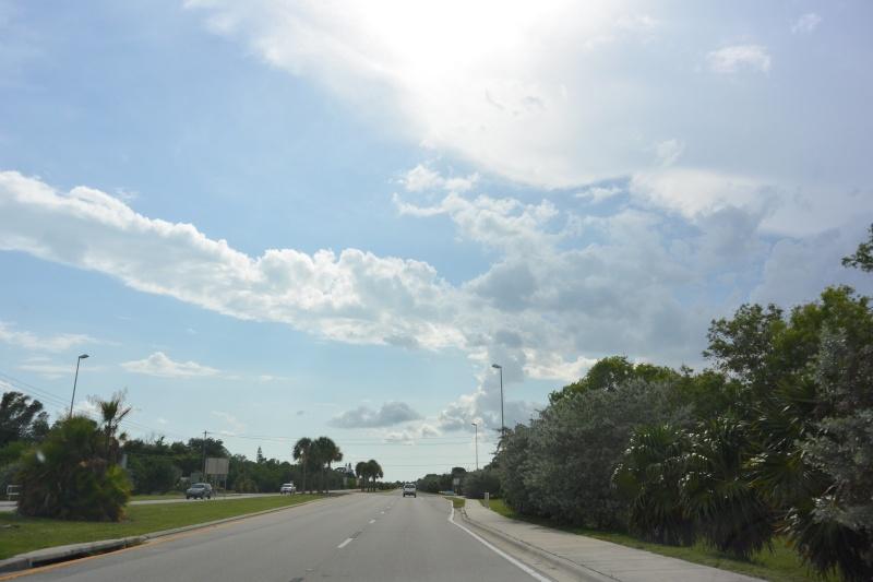 Le merveilleux voyage en Floride de Brenda et Rebecca en Juillet 2014 - Page 19 3811