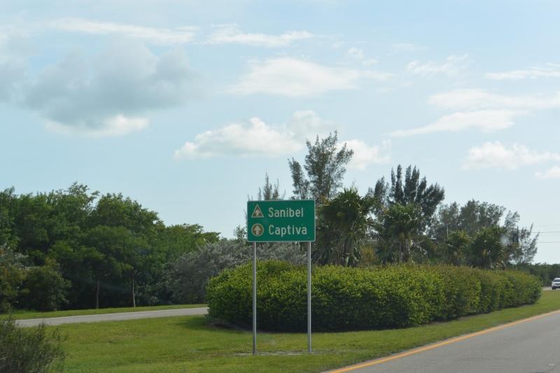 Le merveilleux voyage en Floride de Brenda et Rebecca en Juillet 2014 - Page 19 3911