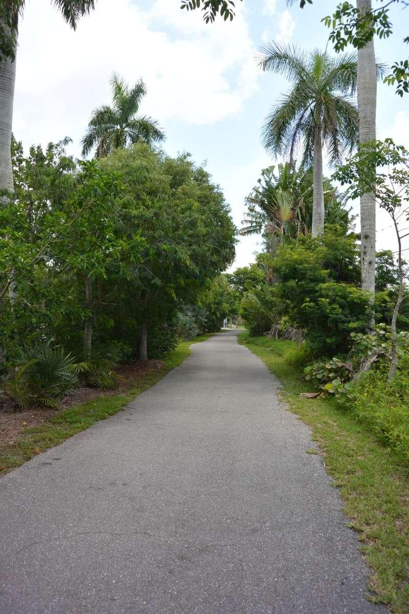 Le merveilleux voyage en Floride de Brenda et Rebecca en Juillet 2014 - Page 19 4012