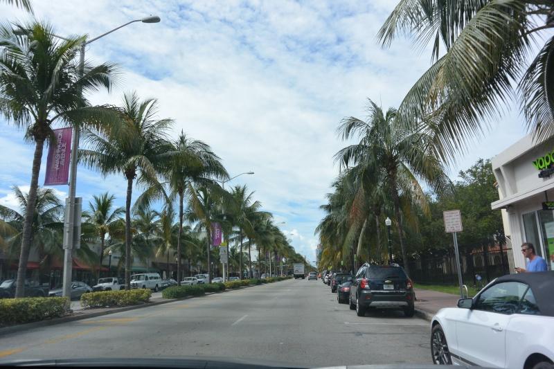 Le merveilleux voyage en Floride de Brenda et Rebecca en Juillet 2014 - Page 19 410
