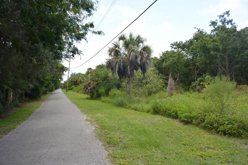 Le merveilleux voyage en Floride de Brenda et Rebecca en Juillet 2014 - Page 19 4112