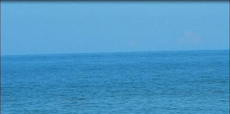 Le merveilleux voyage en Floride de Brenda et Rebecca en Juillet 2014 - Page 20 413
