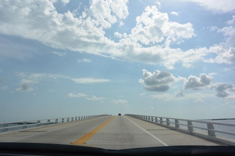 Le merveilleux voyage en Floride de Brenda et Rebecca en Juillet 2014 - Page 19 4311