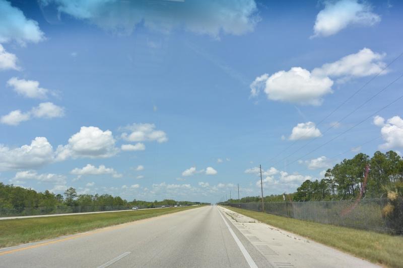 Le merveilleux voyage en Floride de Brenda et Rebecca en Juillet 2014 - Page 19 4410