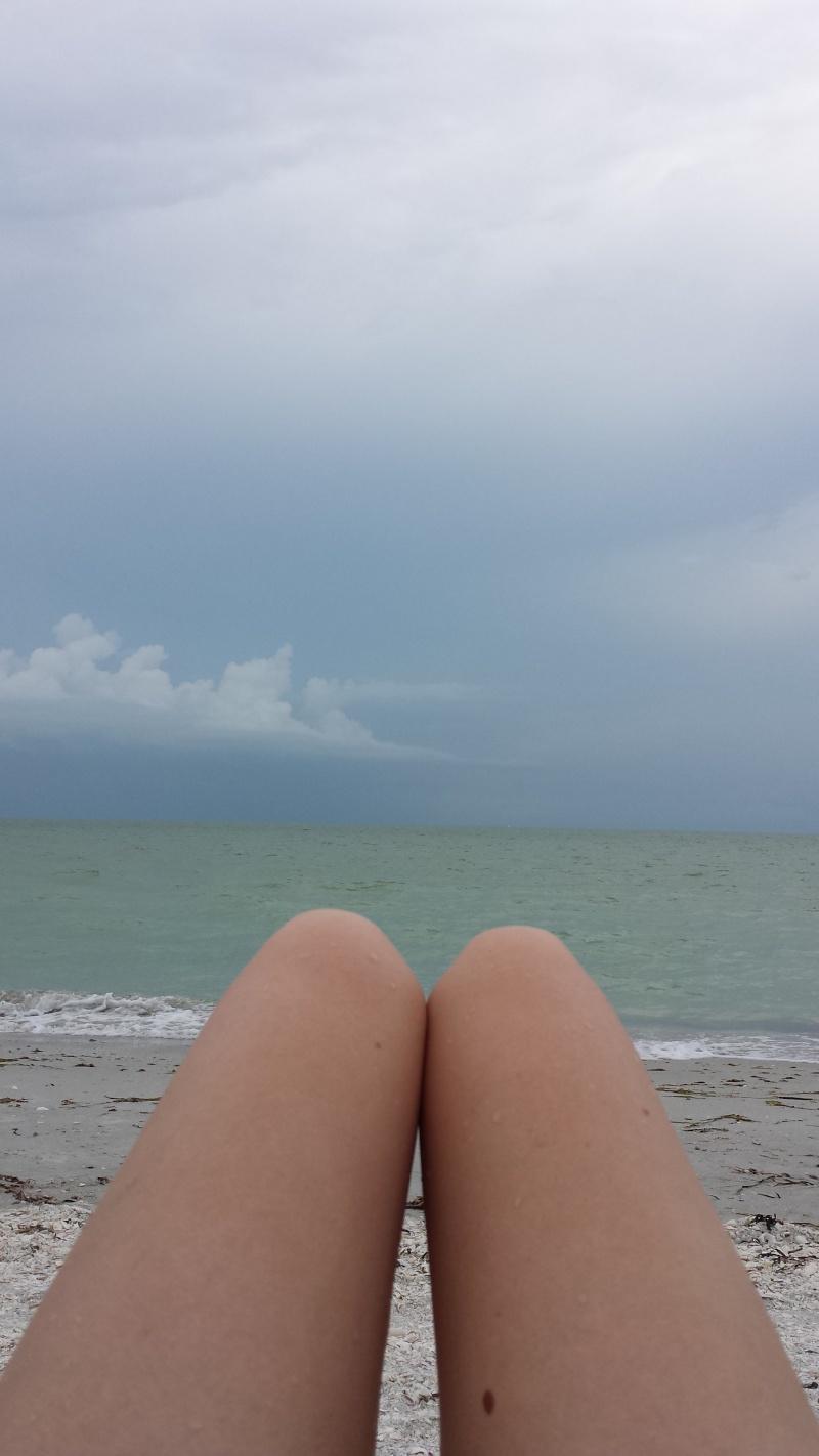 Le merveilleux voyage en Floride de Brenda et Rebecca en Juillet 2014 - Page 19 4612