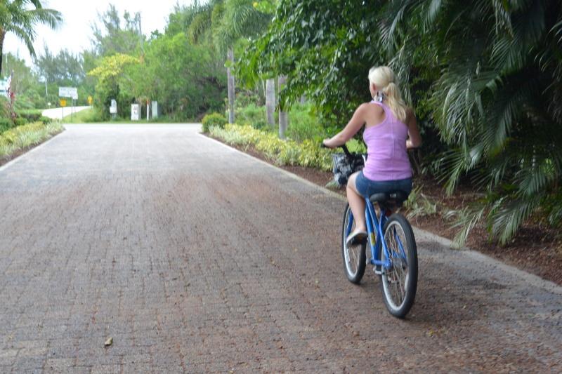 Le merveilleux voyage en Floride de Brenda et Rebecca en Juillet 2014 - Page 20 4912