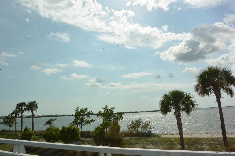 Le merveilleux voyage en Floride de Brenda et Rebecca en Juillet 2014 - Page 19 5211