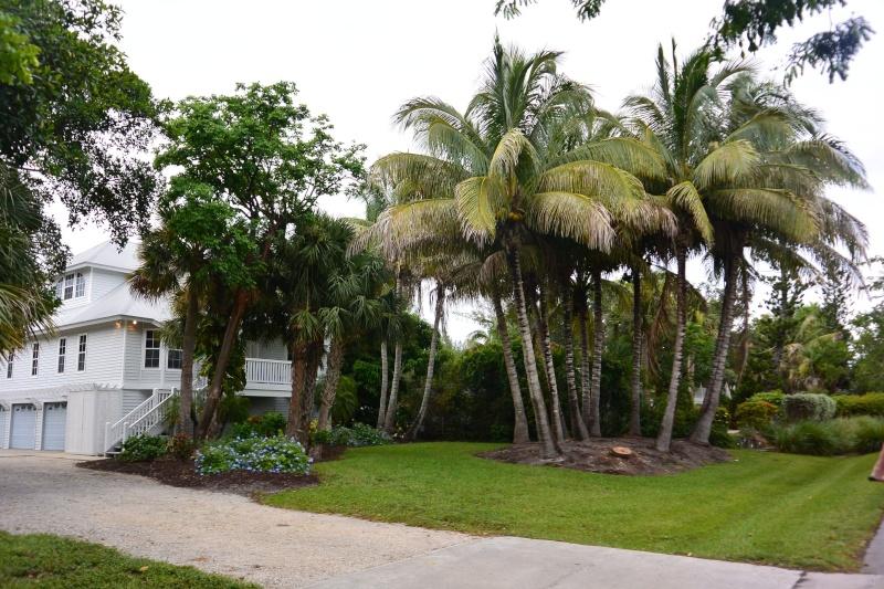 Le merveilleux voyage en Floride de Brenda et Rebecca en Juillet 2014 - Page 19 5212