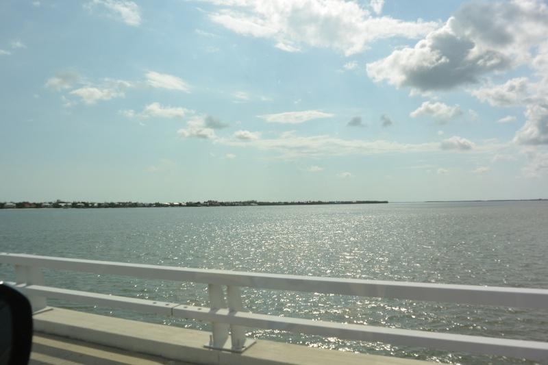 Le merveilleux voyage en Floride de Brenda et Rebecca en Juillet 2014 - Page 19 5311