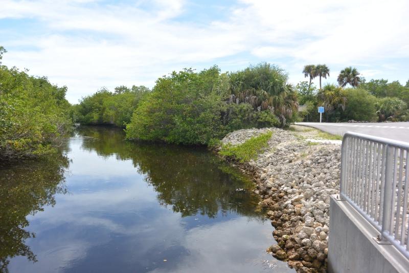 Le merveilleux voyage en Floride de Brenda et Rebecca en Juillet 2014 - Page 20 5313