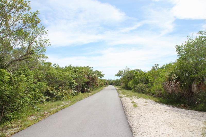 Le merveilleux voyage en Floride de Brenda et Rebecca en Juillet 2014 - Page 20 5613