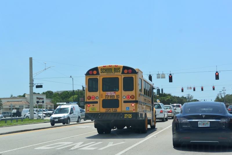 Le merveilleux voyage en Floride de Brenda et Rebecca en Juillet 2014 - Page 19 5810