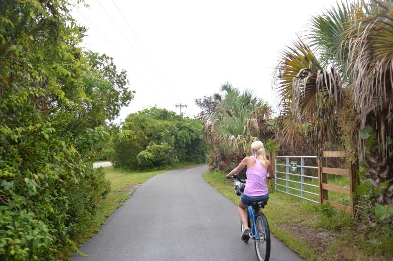 Le merveilleux voyage en Floride de Brenda et Rebecca en Juillet 2014 - Page 20 5912