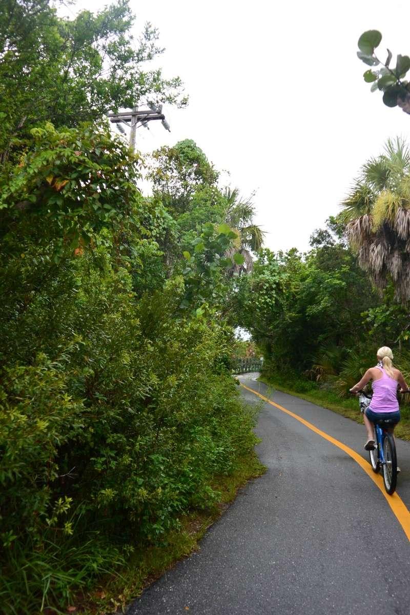 Le merveilleux voyage en Floride de Brenda et Rebecca en Juillet 2014 - Page 20 6012