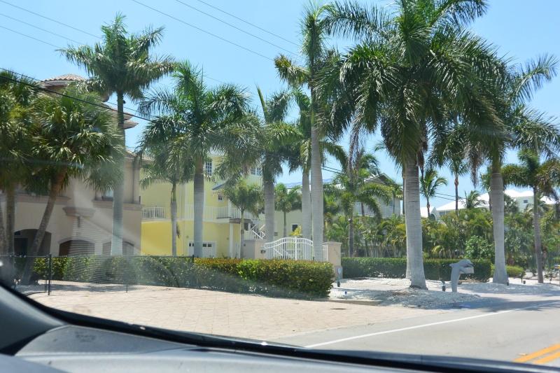 Le merveilleux voyage en Floride de Brenda et Rebecca en Juillet 2014 - Page 19 6110