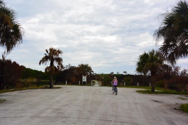 Le merveilleux voyage en Floride de Brenda et Rebecca en Juillet 2014 - Page 20 6112