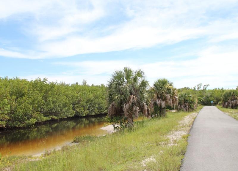 Le merveilleux voyage en Floride de Brenda et Rebecca en Juillet 2014 - Page 20 6113