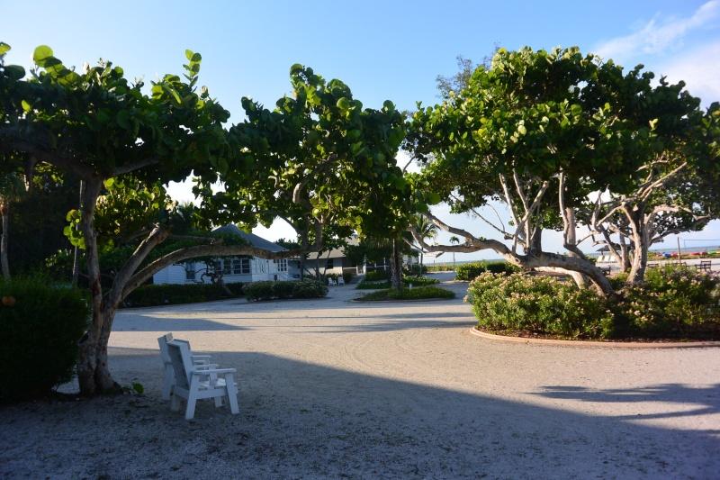 Le merveilleux voyage en Floride de Brenda et Rebecca en Juillet 2014 - Page 19 612
