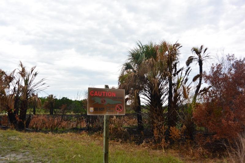 Le merveilleux voyage en Floride de Brenda et Rebecca en Juillet 2014 - Page 20 6512