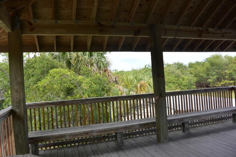 Le merveilleux voyage en Floride de Brenda et Rebecca en Juillet 2014 - Page 20 6612