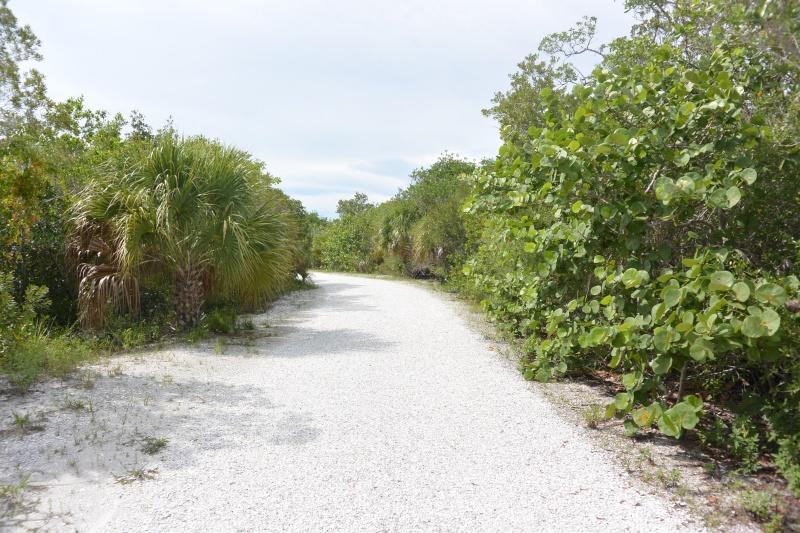 Le merveilleux voyage en Floride de Brenda et Rebecca en Juillet 2014 - Page 20 6912