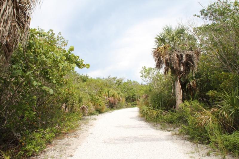 Le merveilleux voyage en Floride de Brenda et Rebecca en Juillet 2014 - Page 20 7012
