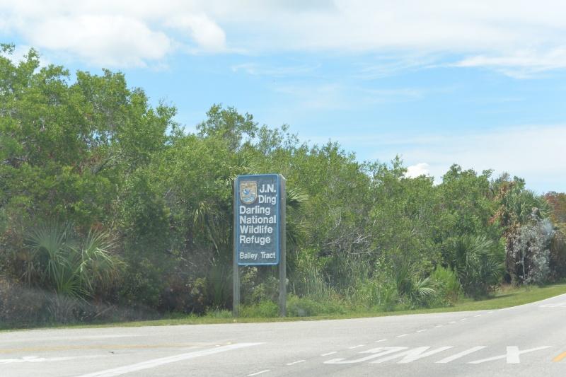 Le merveilleux voyage en Floride de Brenda et Rebecca en Juillet 2014 - Page 20 713