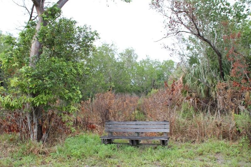 Le merveilleux voyage en Floride de Brenda et Rebecca en Juillet 2014 - Page 20 8710