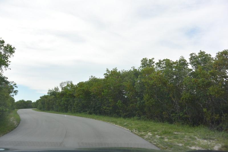Le merveilleux voyage en Floride de Brenda et Rebecca en Juillet 2014 - Page 20 8911