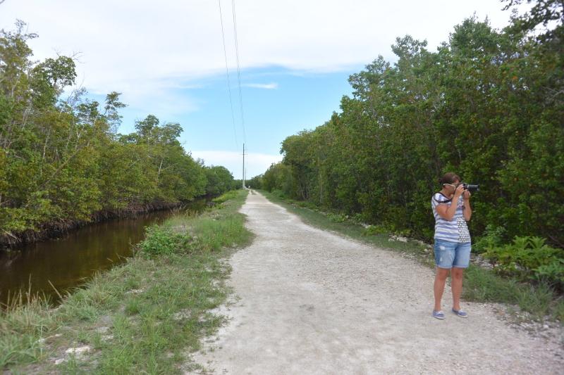 Le merveilleux voyage en Floride de Brenda et Rebecca en Juillet 2014 - Page 20 9111
