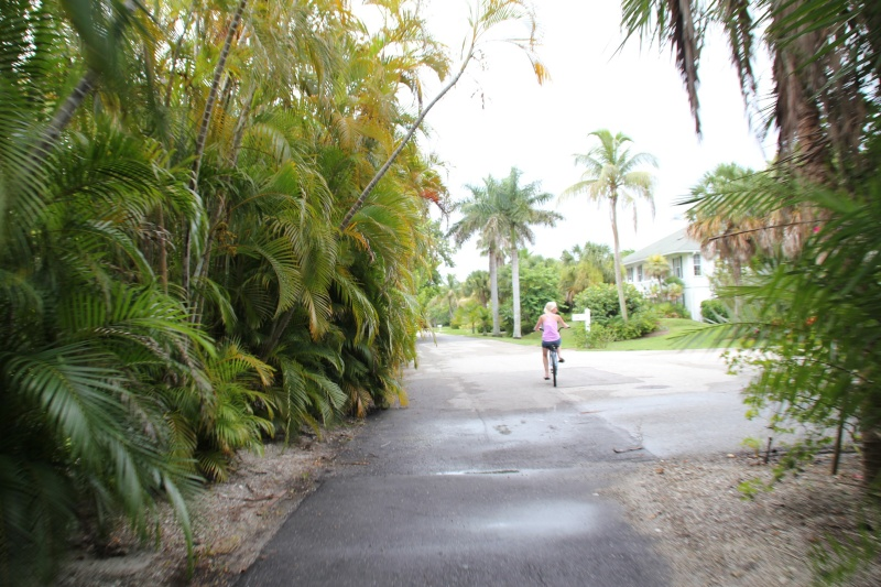 Le merveilleux voyage en Floride de Brenda et Rebecca en Juillet 2014 - Page 19 9410