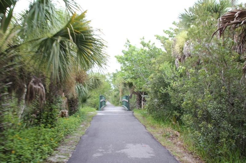 Le merveilleux voyage en Floride de Brenda et Rebecca en Juillet 2014 - Page 20 9910